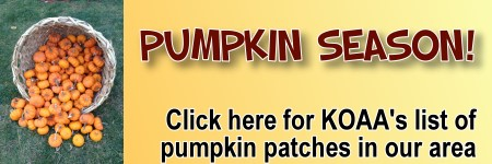 Pumpkin Patches in and around Westchester