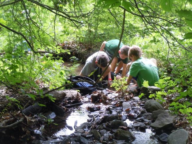 Wilderness Survival Camp At Audubon Greenwich (Grades 6-9